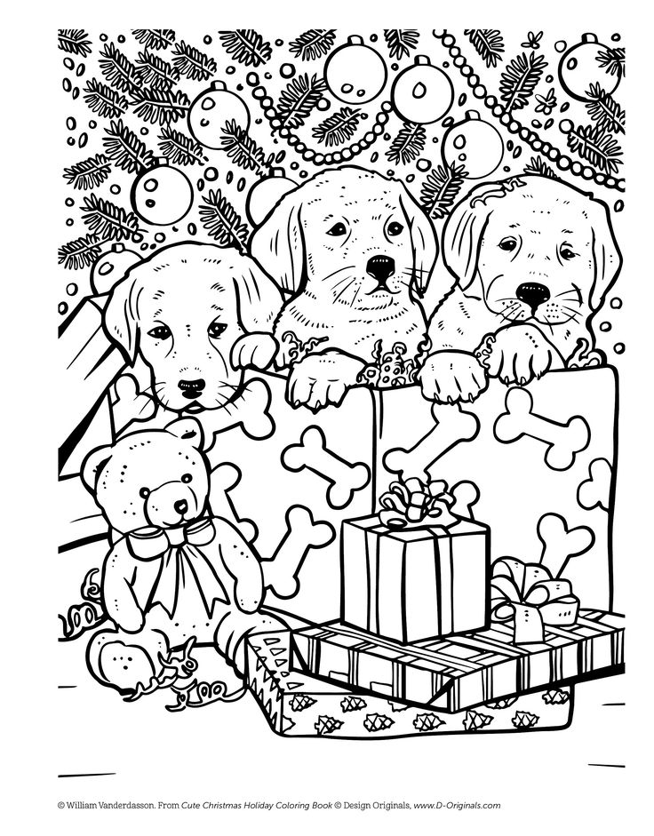Cute Christmas Holiday Coloring Book for Animal Lovers