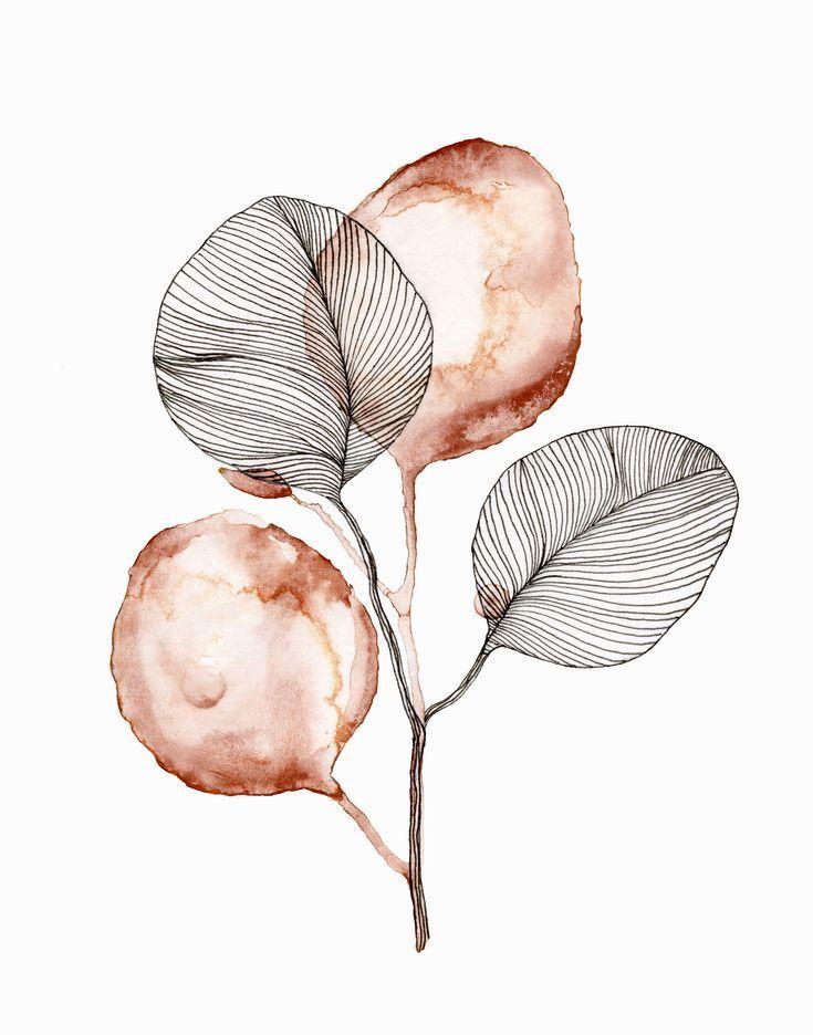 Eukalyptus-Aquarell und Strichzeichnung drucken – Malerei Kunst