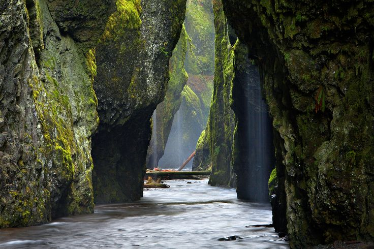 Oneonta Gorge, Oregon. The Oneonta Gorge is in the Columbia River Gorge