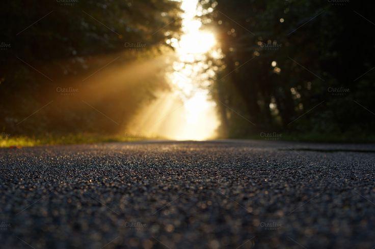 morning asphalt by ateliervonau