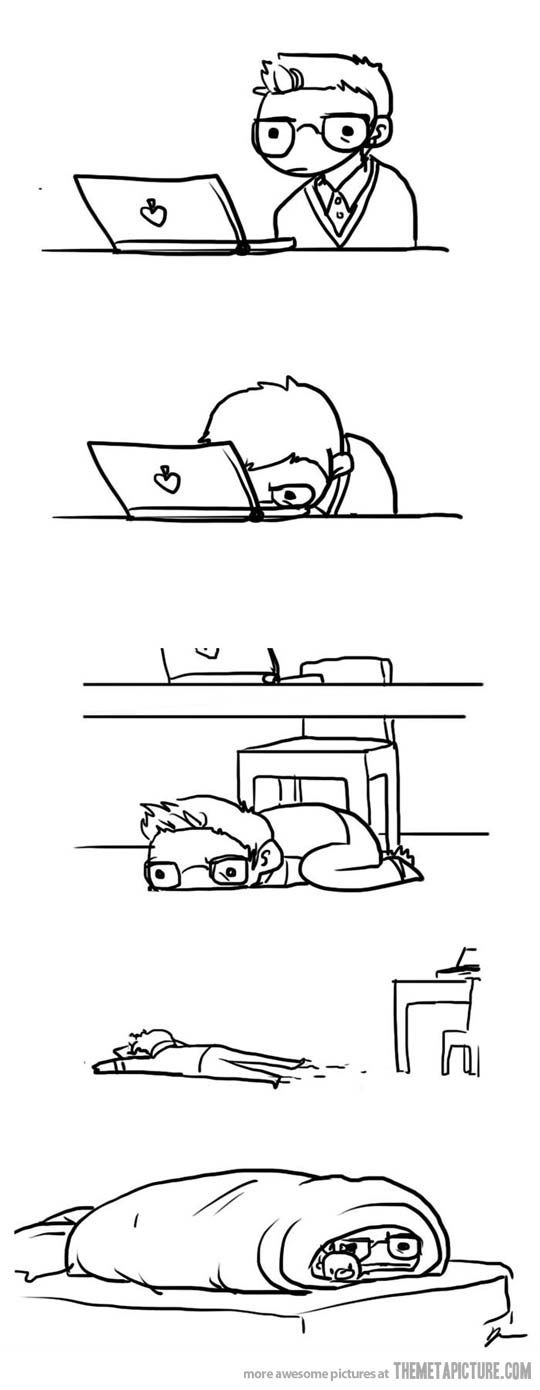 """""""I'm quitting life to become a burrito."""" - my early morning process."""