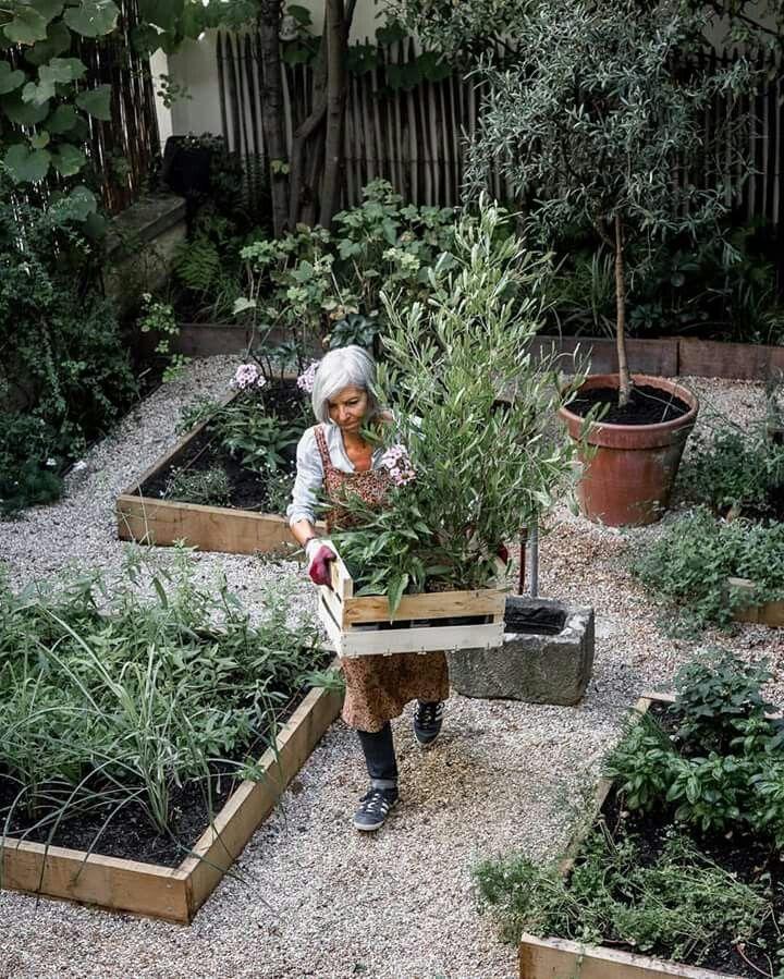 Beete Im Garten Beete Garten Vegetable Garden Design Raised Vegetable Gardens Vegetable Garden Beds