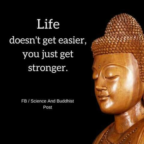 Life doesn't get easier you just get stronger.