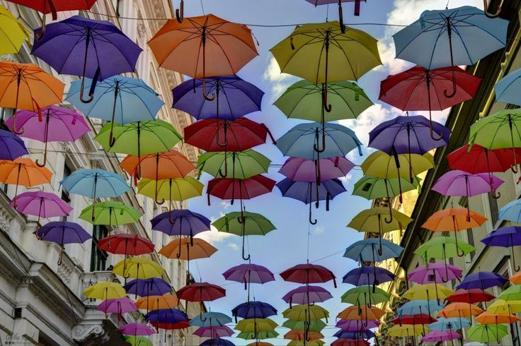 Another one with the lovely umbrellas in Timisoara's city center.:)