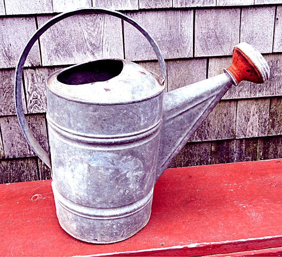 Galvanized Watering Can Red Sprinkler Head Rustic Cottage