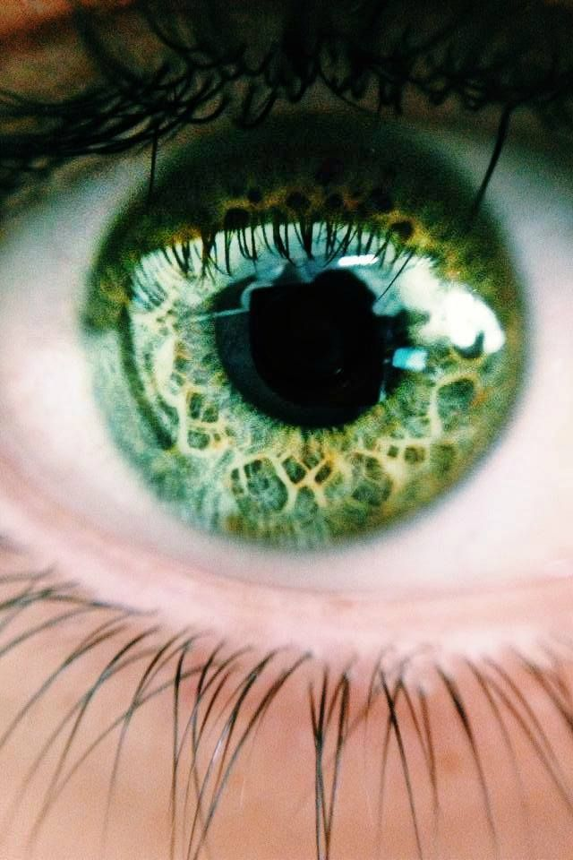 Libby's eye color.