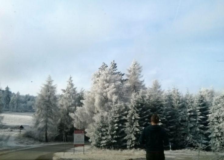 Somewhere near Banská Štiavnica