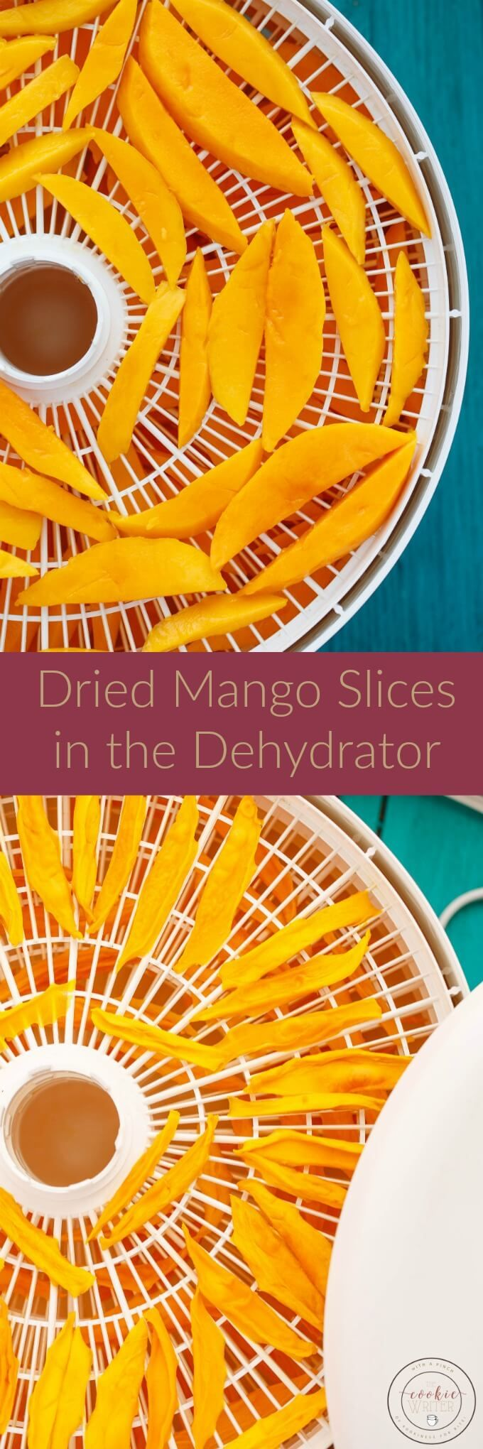 Dried Mango Slices in the Dehydrator | http://thecookiewriter.com | @thecookiewriter.com | #snack | These dried mango slices are way cheaper than the store-bought version and are naturally sweetened with their own sugar!