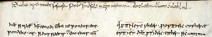 'Tonight I fear not the Vikings', An Early Irish Poem