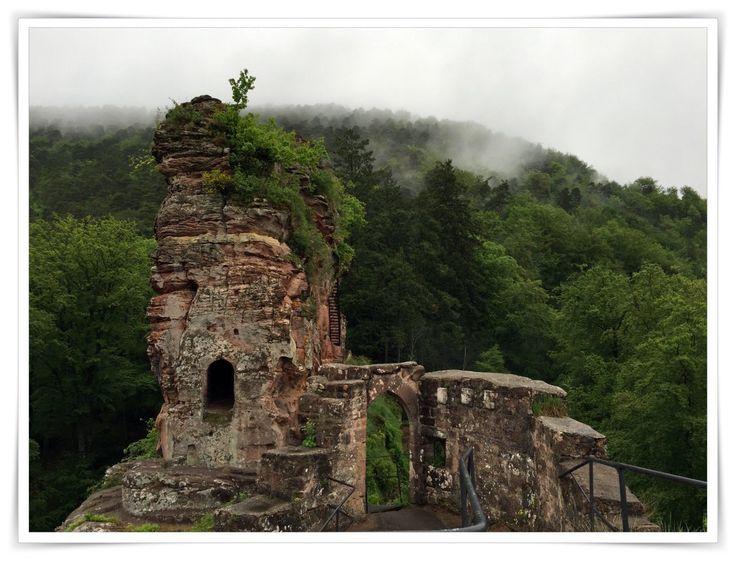 Wandern in der Südpfalz/Nordvogesen