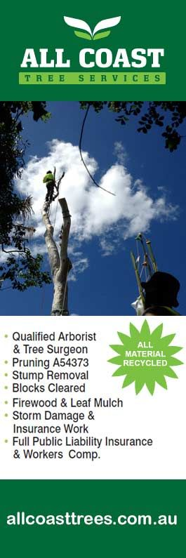 All Coast Tree Services - Tree & Stump Removal Services - Woonona