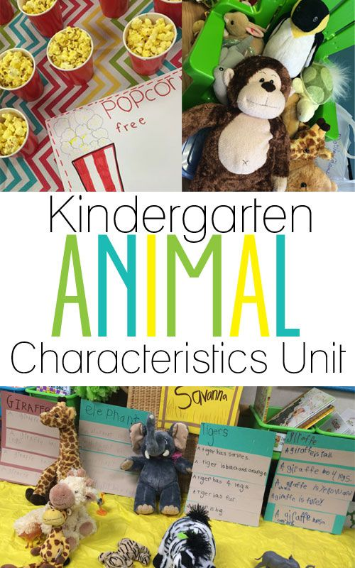 1000+ ideas about Kindergarten Science on Pinterest | Kindergarten ...