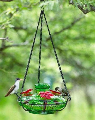 Bloom Perch Hummingbird Feeder