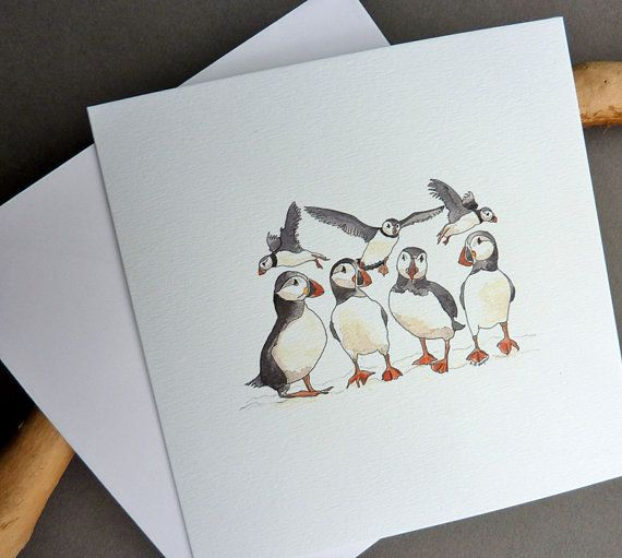 Puffins watercolour art greetings cards 2 pack by CardCreative, £4.00