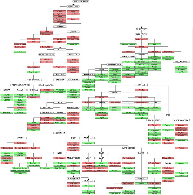 Indo European Language Tree