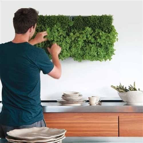 Verticale plantenbak - Spotted on Milledoni