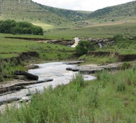 Fully developed crop and grazing farm Harrismith District
