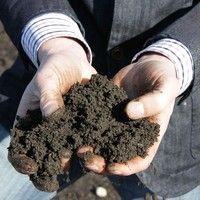 67. Harvest Power: Turning greasy, gooey food waste into energy and compost by greenenergyfutures on SoundCloud