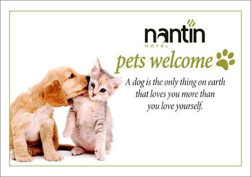 Και οι μικροί σας φίλοι είναι ευπρόσδεκτοι εδώ...  www.nantinhotel.gr #Petfriendlyhotel   #Dogs   #Cats   #Nantihotel   #Ioannina   #Epirus