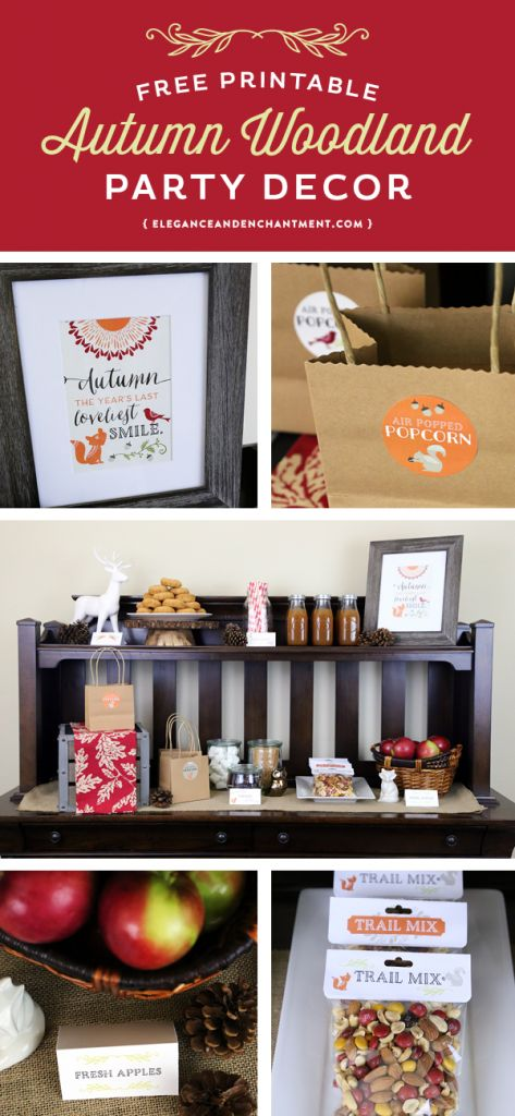 Everything you need to host a sweet, Autumn Woodland-themed birthday party or fall celebration. Free printables include stickers, a sign, tent cards and bag toppers— plus great ideas for food and drink stations. Designs by Elegance & Enchantment.