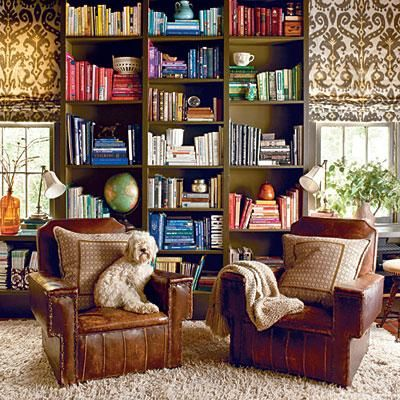 Library Dog | Need a reading companion? This fluffy pooch is a perfect fit for this bold and colorful space. | SouthernLiving.com