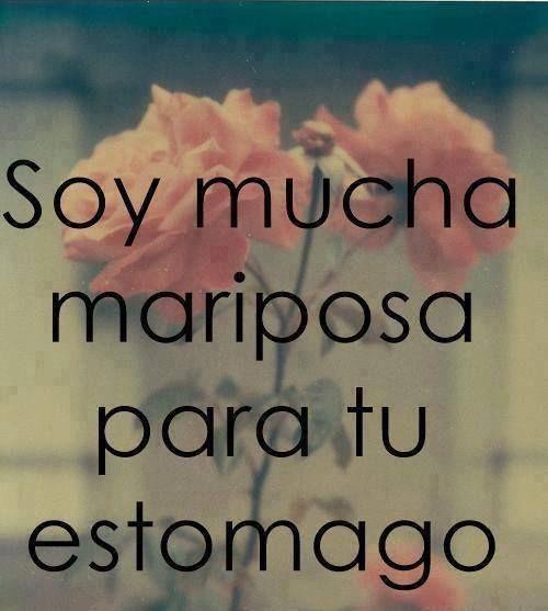 Soy mucha #Mariposa para tu estomago... #Citas #Frases @Candidman pinned with Pinvolve - pinvolve.co