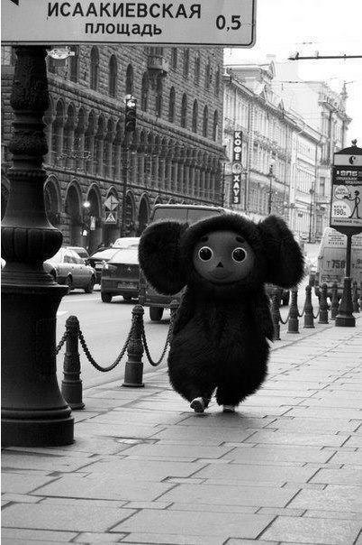 Cheburashka! He's a lot bigger than I imagined him to be...