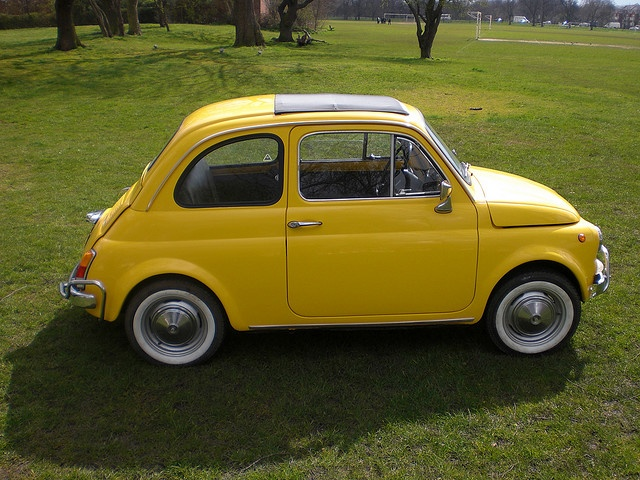 1969 Fiat 500L...another dream car of mine! I love these cute little cars so much!