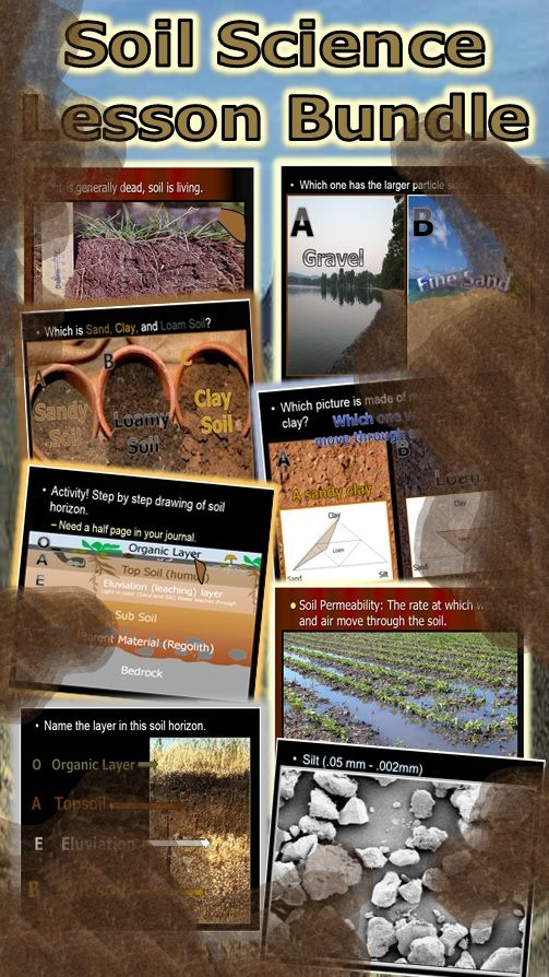 1000 images about tpt science lessons on pinterest for Importance of soil for kids