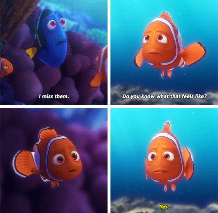 Finding Dory. Pretty much all i did was cry throughout the whole movie. I loved it, and it was so real i just.. I loved it.
