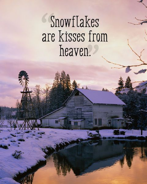 """Snowflakes are kisses from heaven."""
