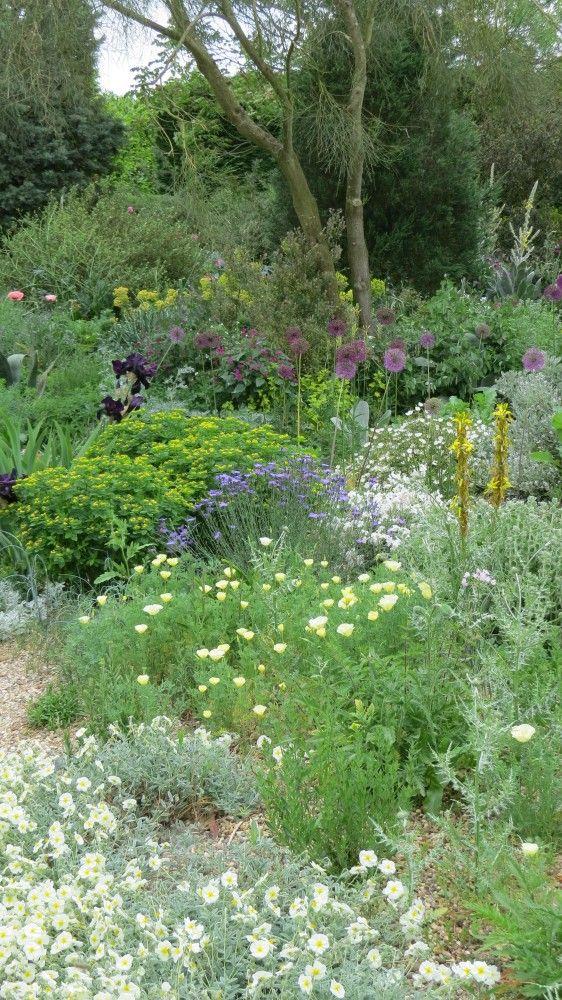 The Gravel Garden - Beth Chatto