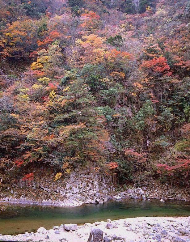 曽爾村 香落渓 紅葉 2 : 魅せられて大和路