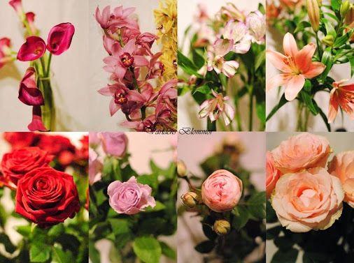 Här finns något för alla  blommor växter smycke eller annan present Överraska med blommor som sprider glädje Världens Blommor www.varldensblommor.se