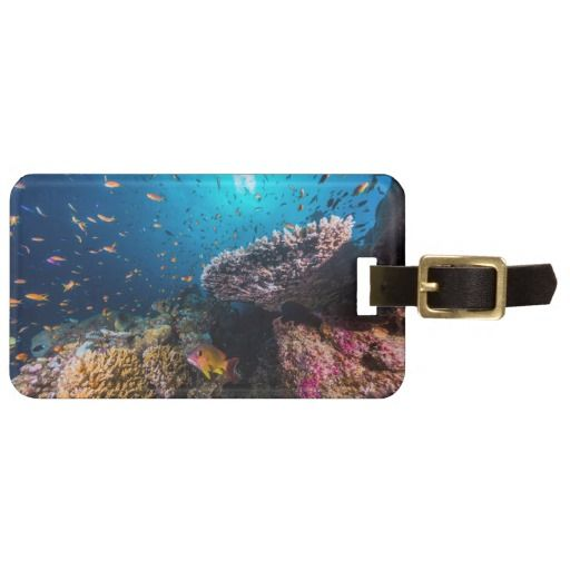 Awesome luggage tag featuring abundant schools of fish swimming amongst the colorful coral of Australia's Great Barrier Reef. #fish #coral #tropicalfish #reef #scuba #animals #marine #australia #luggage #greatbarrierreef