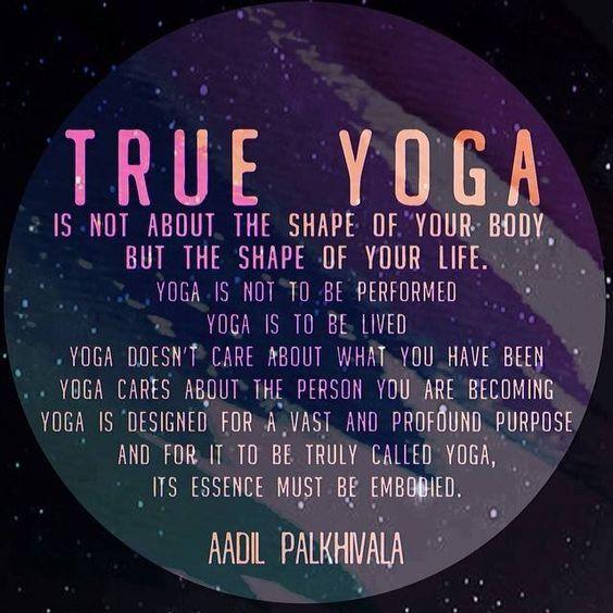 True Yoga                                                       …