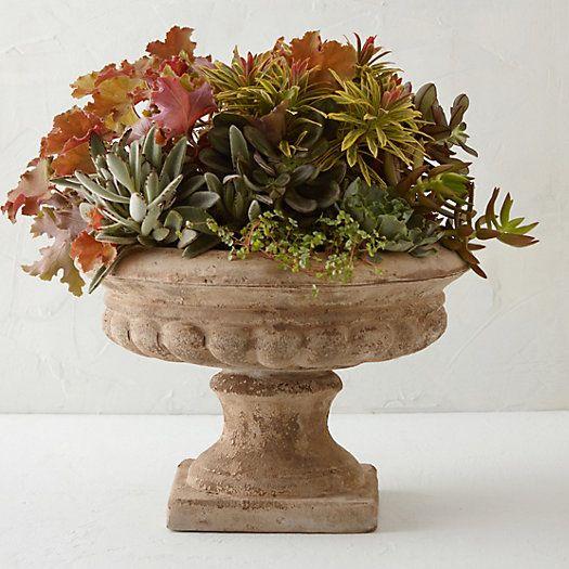 Terracotta Urn Planter FROM TERRAIN