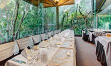 Rainforest Room at the Melbourne Zoo
