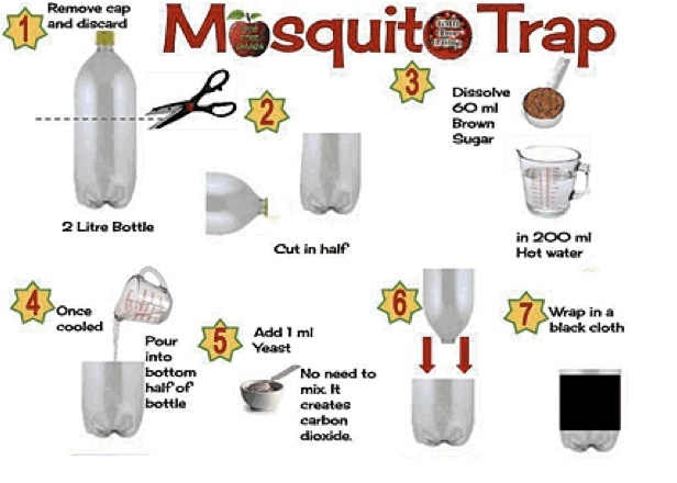 Have A Mosquito Free Summer With These 13 All Natural And