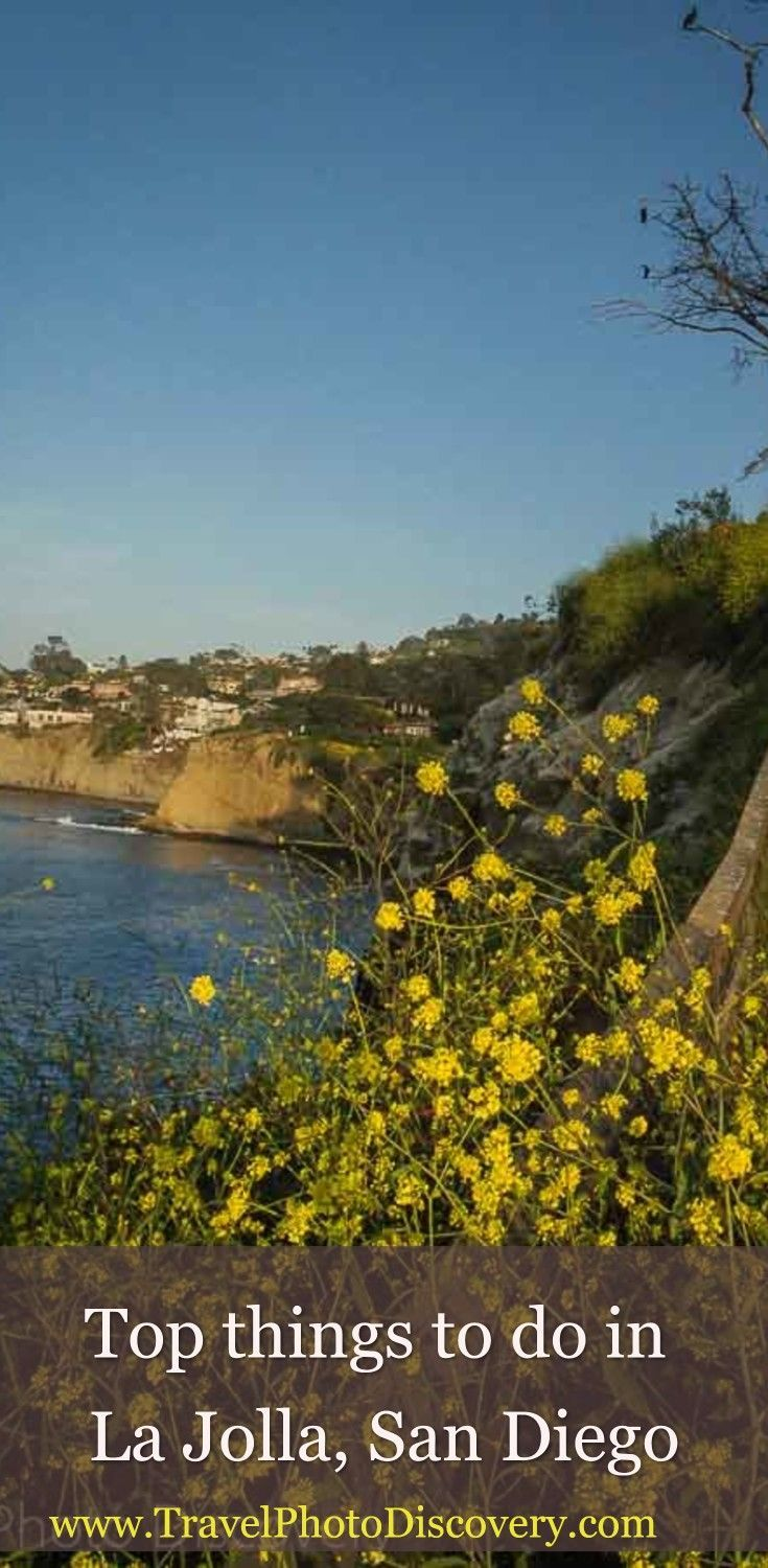 Things to do in La Jolla - popular attractions and places to explore in La Jolla including beaches, coastal exploration and adventure/recreational experiences visiting La Jolla l What to do and see in La Jolla l La Jolla attractions, outdoor places to visit and other fun activities to see around the city and coastal areas. Click on the link for more details and images.  http://travelphotodiscovery.com/things-la-jolla/