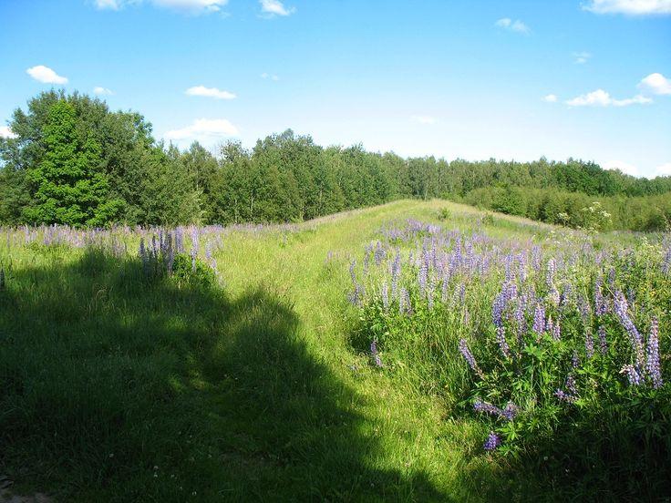 Piękne krajobrazy na szlaku.  www.it.mragowo.pl