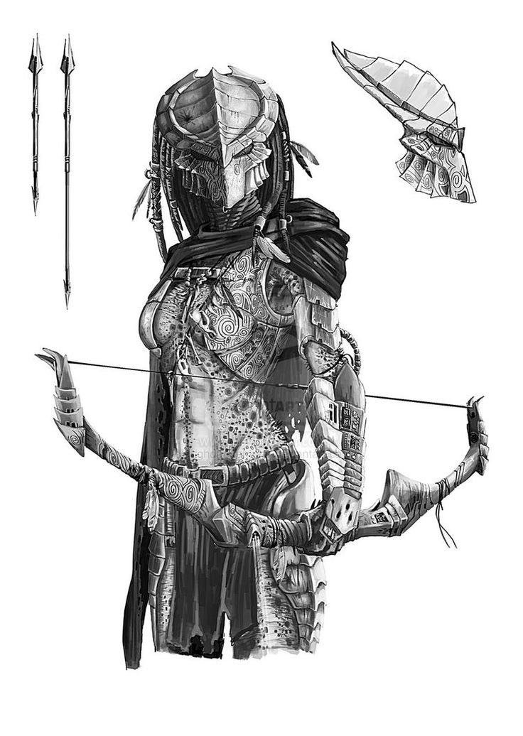 Archer Predator by highdarktemplar on deviantART