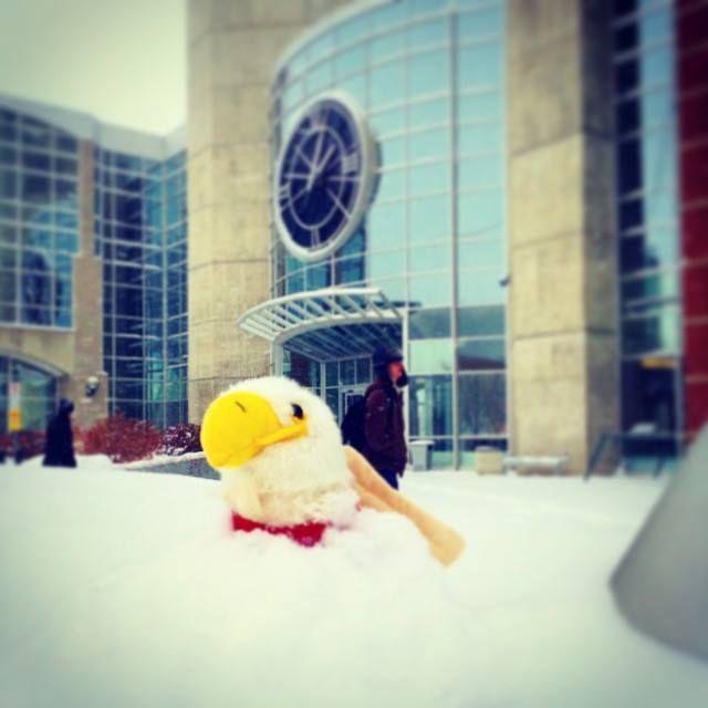 MacEwan University, Edmonton, Alberta