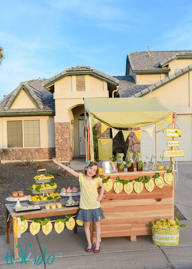 The Ultimate Lemonade Stand | Tikkido.com