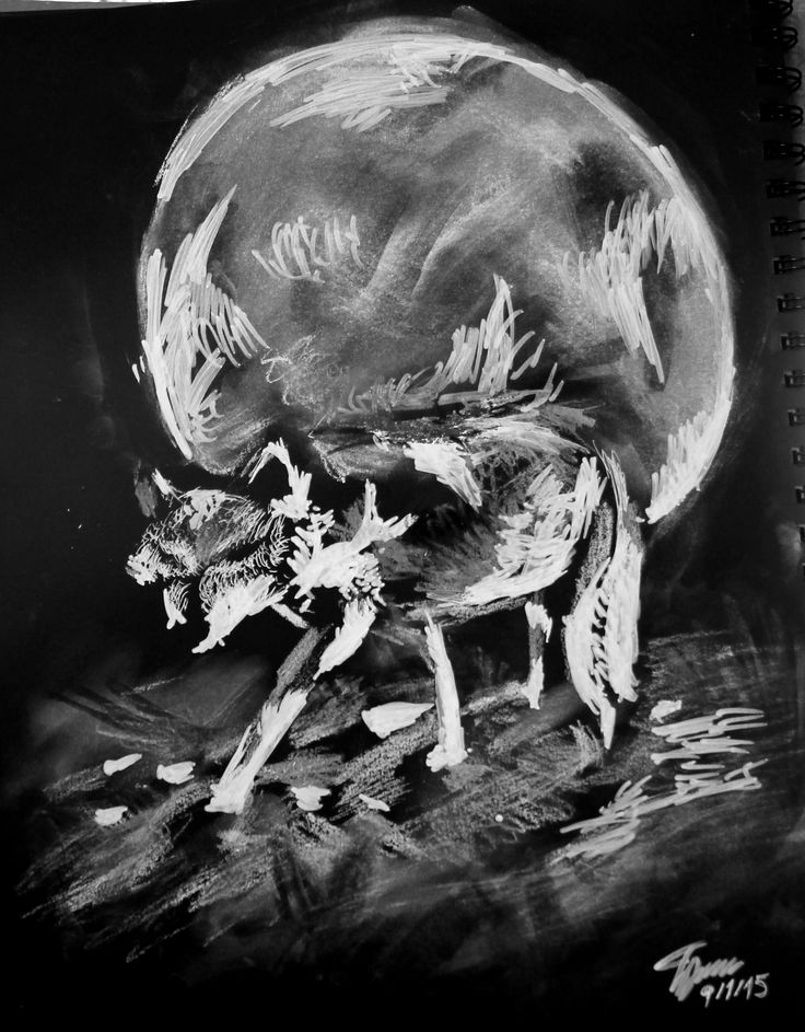 The Wolf in the Night White Faber Castel marker, chalk pastel, gel pen, and oil pastel on black paper.