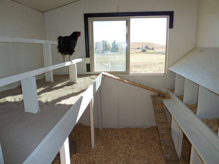 The Little Red Hen House | Raising Chickens | Chickens ...