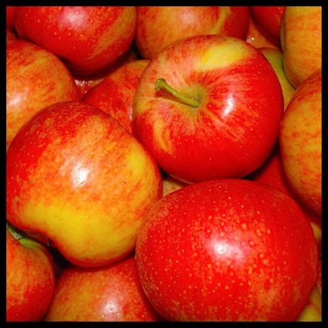 Apples Anyone?  #apples #fall #applepicking #healthy #snack #applesauce #delicious #sharicreates