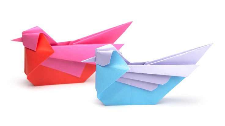 Learn how to make some beautiful origami birds, this 'mandarin' bird was designed by Simon Anderson. These origami birds can sit around or hang them up as de...