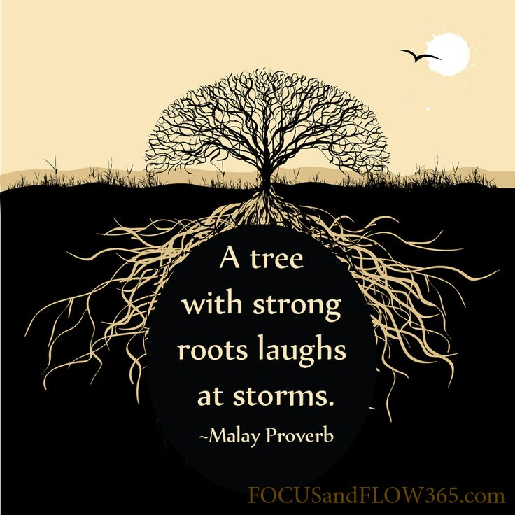 """""""A tree with strong roots laughs at storms"""". ~Malay Proverb >>> TAKE A DEEP BREATH and remember...""""Your Roots Are Strong""""."""