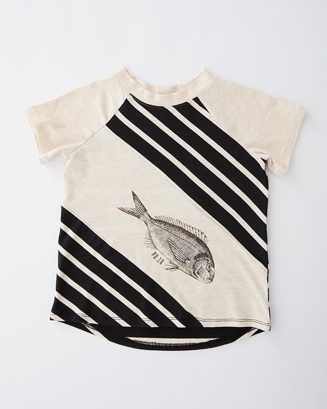tshirt-sole-ligné-poisson-cokluchmini-pe18